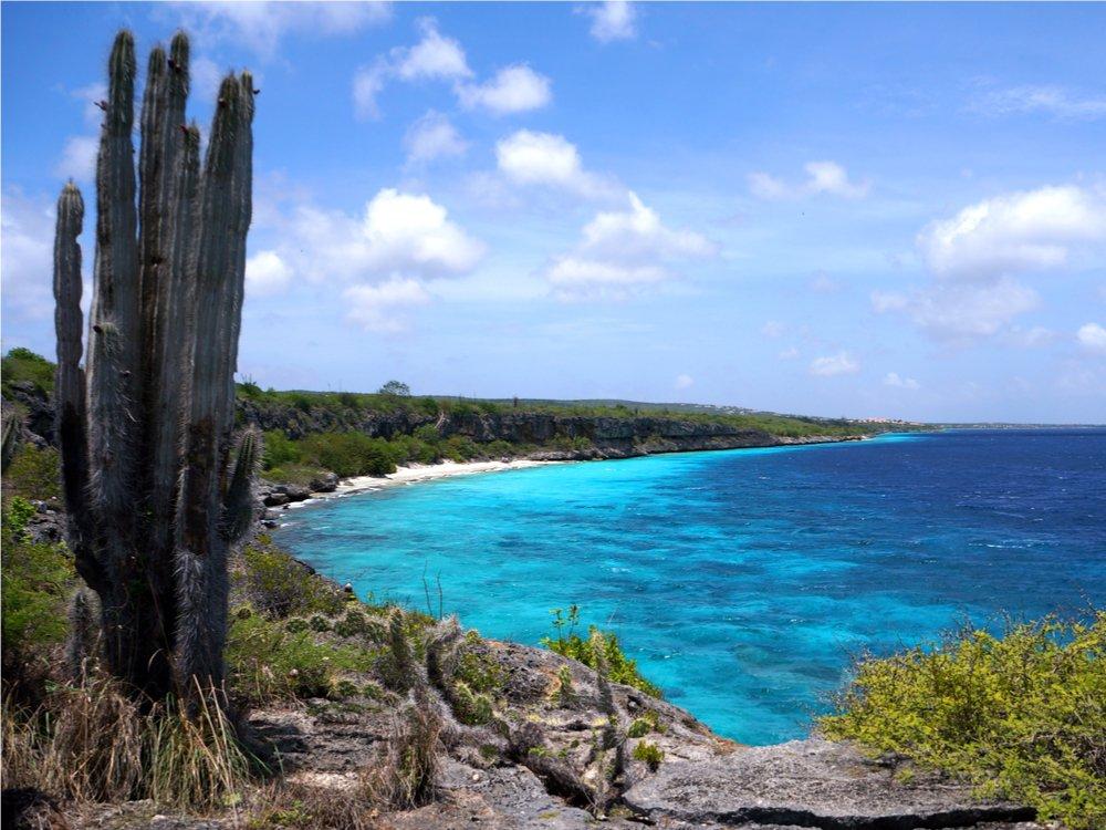 aanbiedingen goedkope vliegvakanties Aruba en Bonaire vergelijken Crazy Days bij Corendon nu 9 dagen naar Bonaire of Aruba vanaf 499 Euro