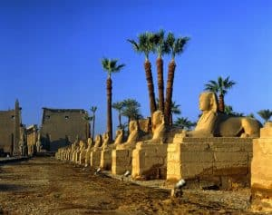 Bezoek ook de tempels van Luxor tijdens uw all iclusive vakantie naar Egypte 300x237 8 Dagen all inclusive naar Egypte, 5 ***** strandhotel vanaf € 431,