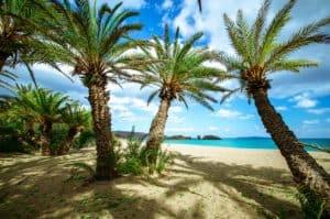 Vai Beach op Kreta is bekend uit o.a. de Bounty reclames 300x199 Vroegboekkorting All inclusive vakantie Kreta 8 dagen 3 *** hotel voor maar € 284,  p.p. (vertrek in mei 2020)