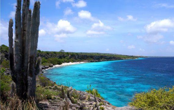 aanbiedingen goedkope vliegvakanties Aruba en Bonaire vergelijken 570x360 Home