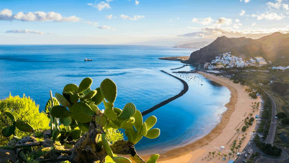 aanbiedingen goedkope vliegvakanties Gran Canaria 940x530 Home