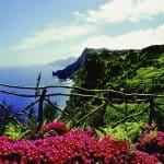aanbiedingen goedkope vliegvakanties Madeira vergelijken met korting 150x150 Aanbiedingen goedkope vliegvakanties Madeira, vanaf € 261.